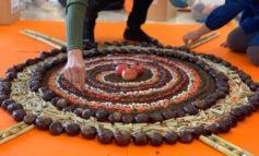 """La """"land art"""" entra alle elementari di Colonnetta e Pozzuolo con il progetto """"Giardiniamo"""""""