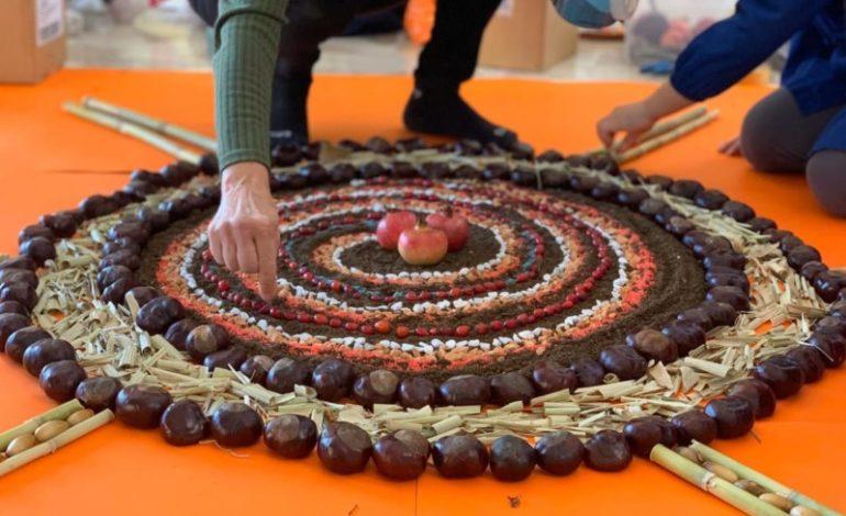 giardiniamo land art scuola castiglionedellago eventi-e-cultura