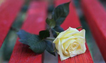"""Paciano, Giornata contro violenza sulle donne: domenica inaugurazione della """"Panchina Rossa"""""""