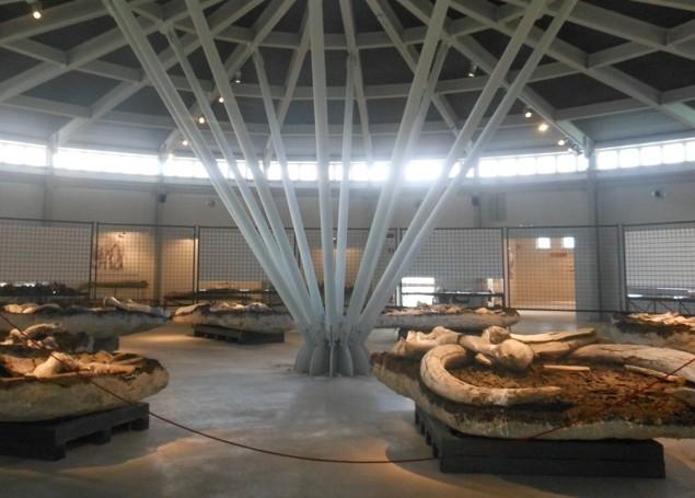 Museo e alloggi popolari, Civica Piegaro chiede attenzione e presenza