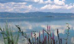 Fanghi del lago, luce verde dell'Arpa: non sono inquinati e possono essere rimossi