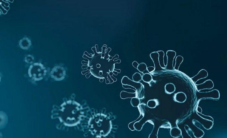 casi coronavirus positivi umbria cronaca