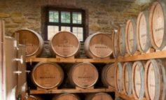 """A rischio il settore del vino umbro, Cantina Berioli: """"Vendite quasi azzerate"""""""