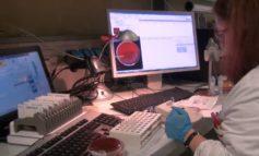 Coronavirus: un nuovo positivo dopo 11 giorni a zero