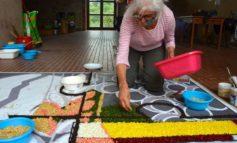 Corpus Domini a Paciano, un solo tappeto floreale per diciassette città