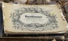 Concerto d'estate sulle note di Beethoven ed Elgar alla Rocca medievale