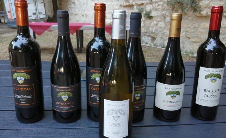 cantina duca della corgna Gamay grechetto vino castiglionedellago economia