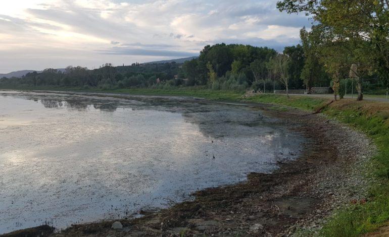 fdi lago manutenzione marco squarta presidente politica