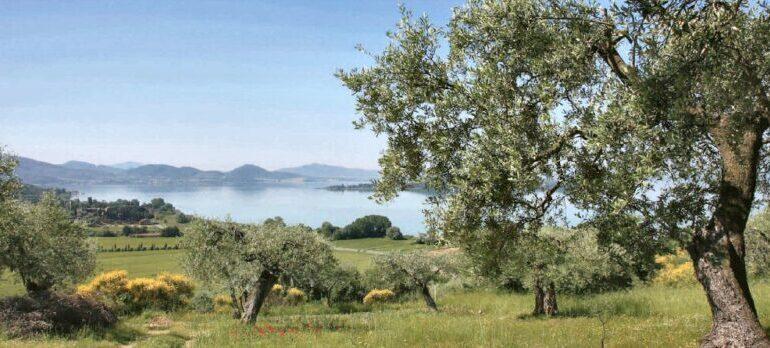 La Cooperazione agroalimentare del Trasimeno a Pozzuolo Umbro