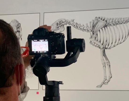 Linea Verde Radici sulle tracce dei bisonti al Museo paleontologico