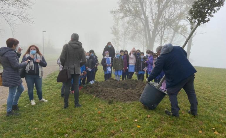 Il Consiglio comunale dei ragazzi pianta due alberi sul lungolago