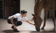 Equitazione: a Costanza Laliscia la medaglia d'argento al Valore Atletico del CONI