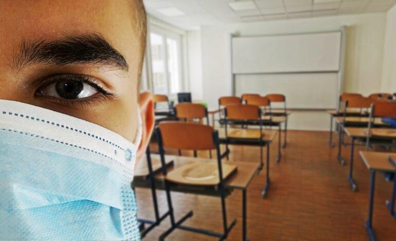 coronavirus covid dad didattica a distanza scuola cronaca