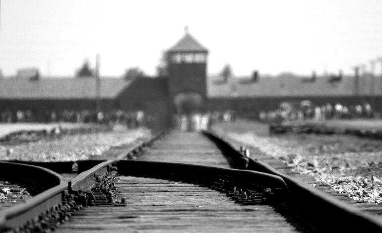 I Comuni di Panicale e Piegaro affidano ad un suggestivo video la riflessione sull'olocausto