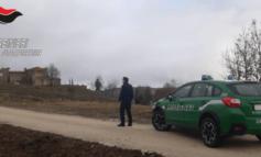 Villa abusiva sulle colline del lago Trasimeno, intervengono i carabinieri forestali
