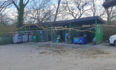 Centro raccolta, chiusura temporanea per rischio caduta alberi