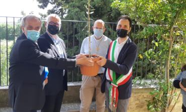 """Dal Banco mondiale del germoplasma di Cordova a Paciano per il primo """"Garden of peace"""""""