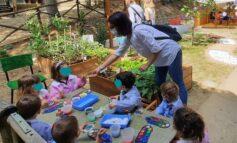 Scuola e continuità. Scambi di esperienze tra nido e scuola dell'infanzia