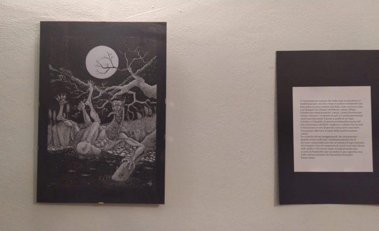 Museo della Pesca. Inaugurata la mostra dell'illustratore Ettore Vignali