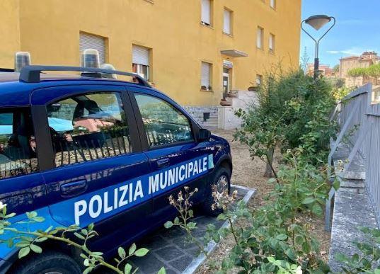 Alimentari trasportati irregolarmente: la polizia locale sequestra un furgone