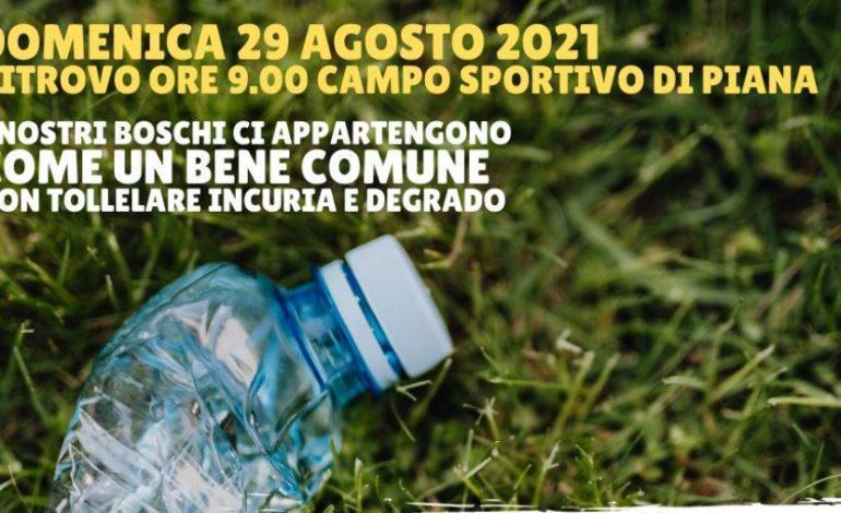 """Firmato il """"Patto di Collaborazione per la raccolta dei rifiuti abbandonati nei boschi"""", domenica prima giornata"""