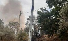 Incendi a Passignano sul Trasimeno, i Carabinieri denunciano il responsabile